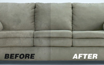 Top 5 Reasons to Get Your Upholstery Cleaned