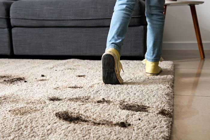 10 Annoying Carpet Stains and What To Do About Them